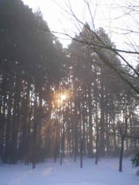 20010119_1