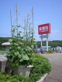 201083_8