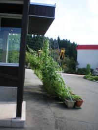 2010819_4