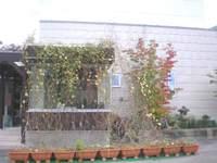 2010114_1